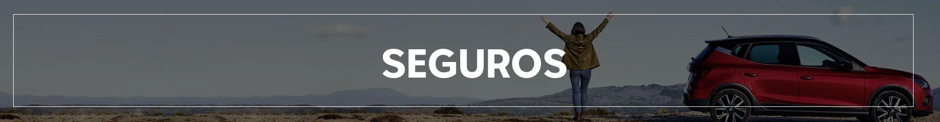 SEGUROS   Automocion Terry Concesionario Cadiz